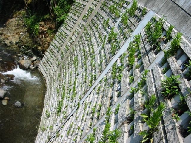 河川護岸での施工例