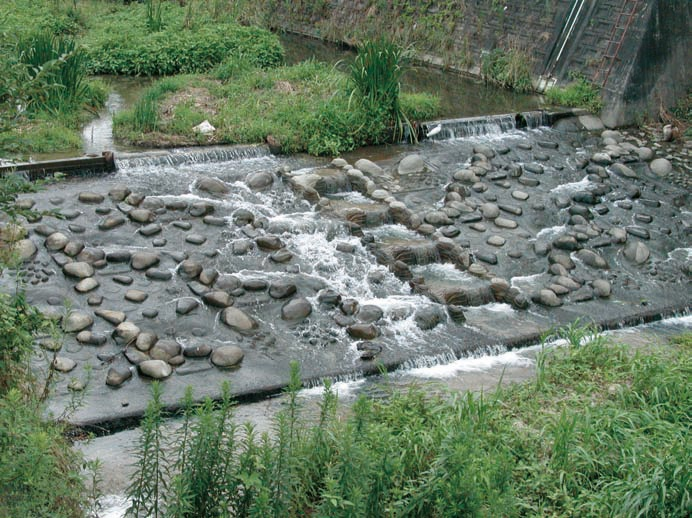 魚道ブロックの施工例